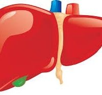 Baba Ramdev Medicine For Liver-Complete Liver Treatment