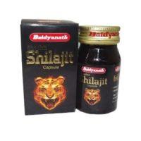 Baidyanath Shilajit Capsule